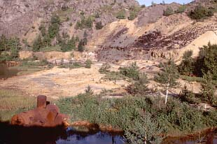 Old Mine Site